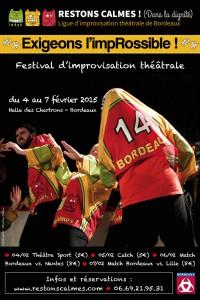 afficheFestival2014